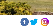 social links icons