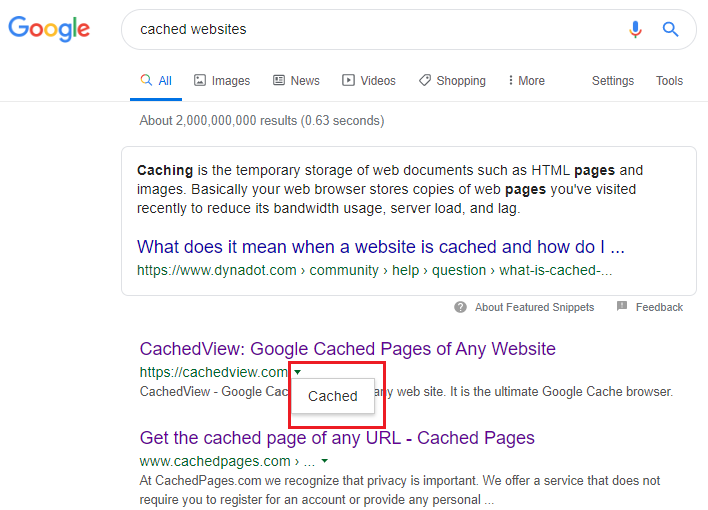 google-cached-page
